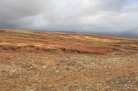Etappe  Reykjavík – Mosfellsbær – Þingvellir – Laugarvatn – Geysir – Gullfoss – Flúðir