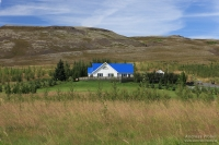 Etappe  Reykjavík – Mosfellsbᴂr – Ϸingvallavatn – Laugarvatn – Gullfoss – Geysir – Flúđir – Laugaras – Grímsnes
